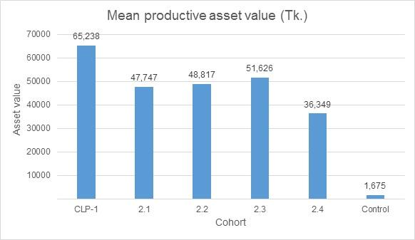 Productive asset
