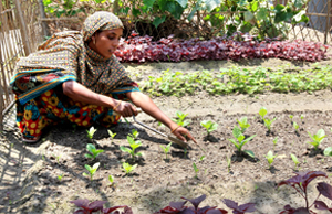 A CLP participant is working on her homestead garden